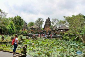 Qué ver y hacer en Ubud: El paraíso interior de la isla de Bali