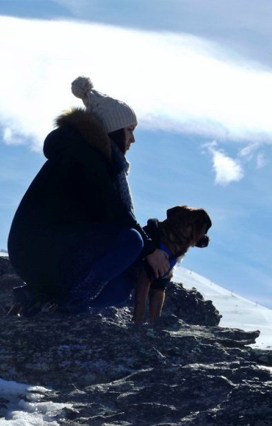 sierra nevada con perros